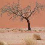 Touraco Travel Services - Sossusvlei - Namibia-Botswana-Victoria falls