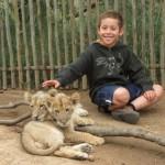 Touraco Tours - Ukutula Lion interaqction