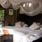 Touraco Travel Services - Kruger Park Safari in Luxury Lodge 3 Days