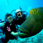 Touraco Travel Services - Scuba Diving & Snorkeliong on Mauritius