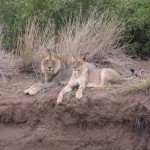 Touraco Travel Services - Okavango Delta, Chobe National Park und Victoria Falls