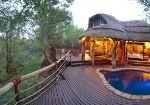 Touraco Travel Services - Madikwe - Jaci's Lodges - Nare