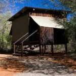 Touraco Tours - Mosetlha Bush Camp Madikwe